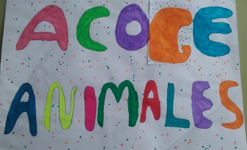 acoge animales